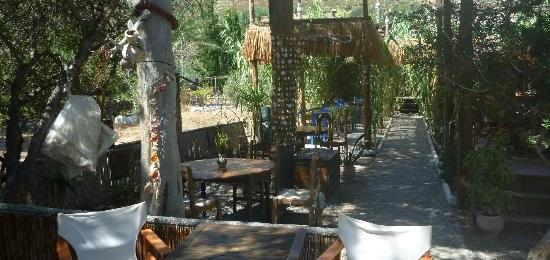 Exotic Ambeli - Kalymnos