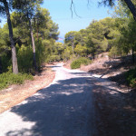 Walk from Skala to Chalkiada beach