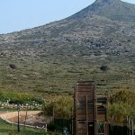 Visit the Hellenic Wildlife Hospital